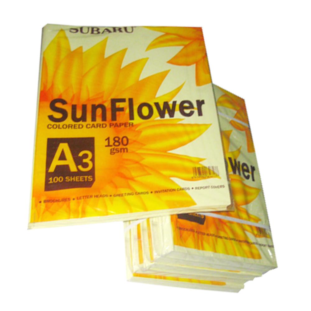 Bìa Thái Sunflower A3 (Trắng, dương, hồng, lá, vàng)