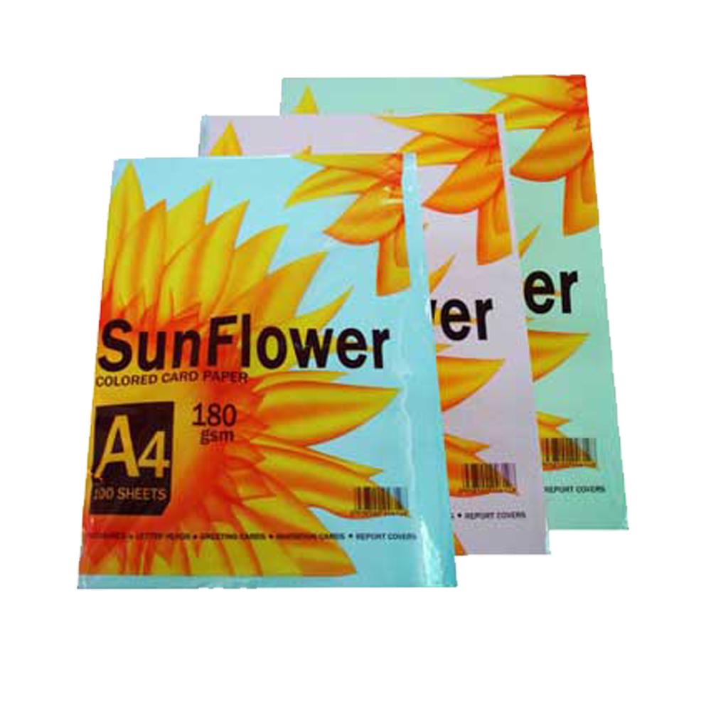 Bìa Thái Sunflower A4 (Dương, lá, trắng, hồng, vàng)